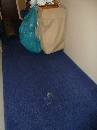 BEST WESTERN Blue Tower Hotel:                   stains and paint marks on the 9th floor all over the place