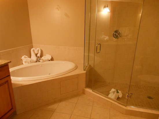 The Residences at Biltmore: Gorgeous bathroom.