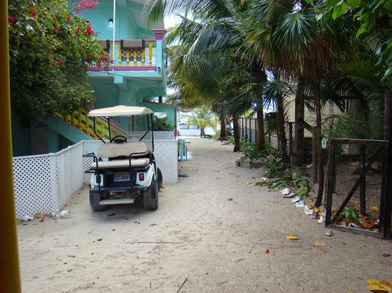 Barefoot Beach Belize:                   my 'direct view' room