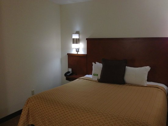 Hyatt Place Herndon / Dulles Airport - East:                   Bed