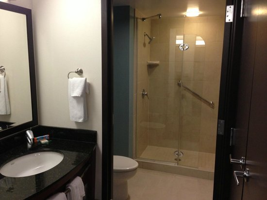 Hyatt Place Herndon / Dulles Airport - East:                   Bathroom