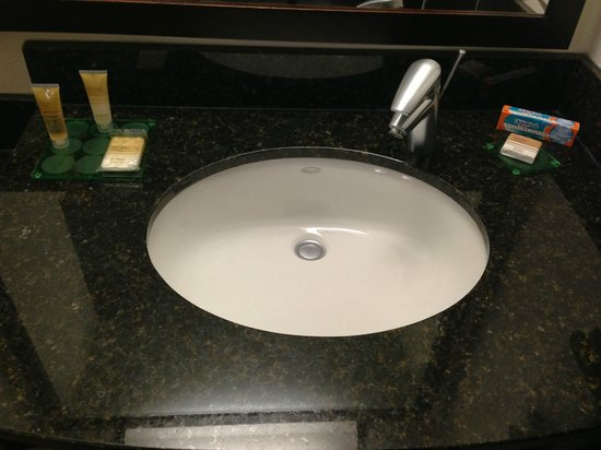 Hyatt Place Herndon / Dulles Airport - East:                   Sink
