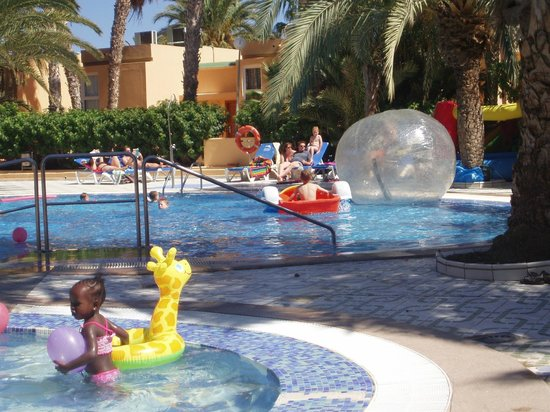 Hotel Stella Paradise:                   kids fun day
