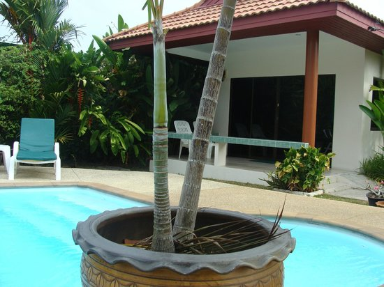 Sansuko Ville Bungalow Resort: chambre prs de la piscine