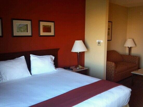 Holiday Inn Express Hotel & Suites Tampa Northwest - Oldsmar:                   Room