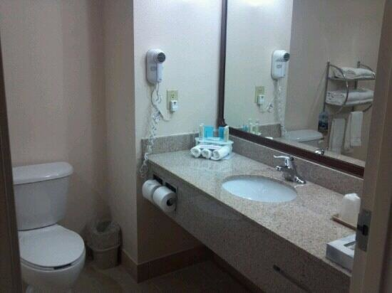 Holiday Inn Express Hotel & Suites Tampa Northwest - Oldsmar:                   Bathroom...super clean!