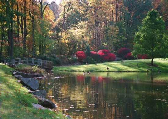 The Rose Garden Picture Of Brookside Gardens Wheaton