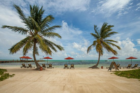 Grand Caribe Belize Resort and Condominiums: View of the Beach