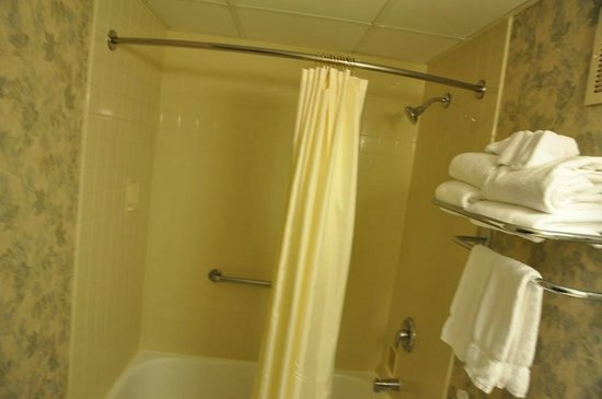 The Madison Hotel:                   shower