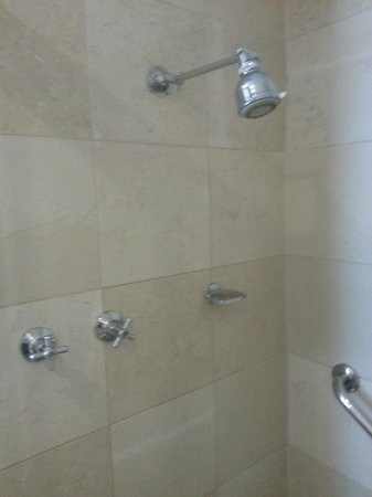 The Victoria Hotel: Shower