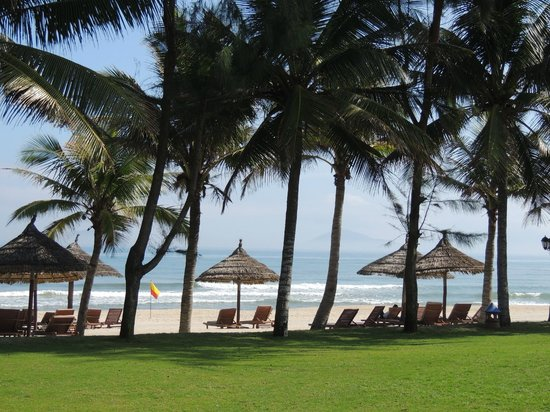 Palm Garden Beach Resort & Spa:                   View of the beach from the hotel grounds