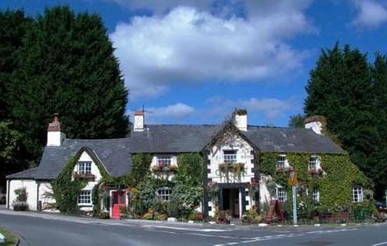Llyswen, UK: The Griffin inn Summer