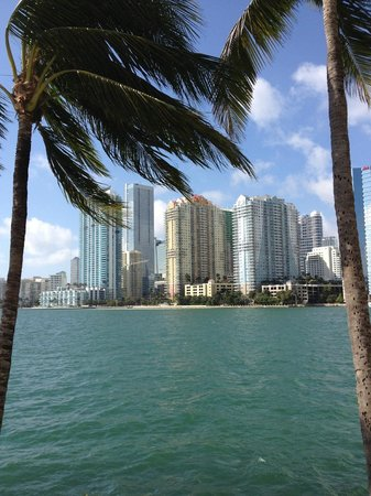 Mandarin Oriental, Miami:                   view from the pool (afternoon)