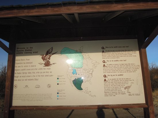 Willcox, AZ:                   Description at the AEPCO Viewing Area