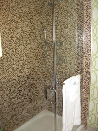 Holiday Inn Express Anaheim Maingate: Cool shower with dual water heads.