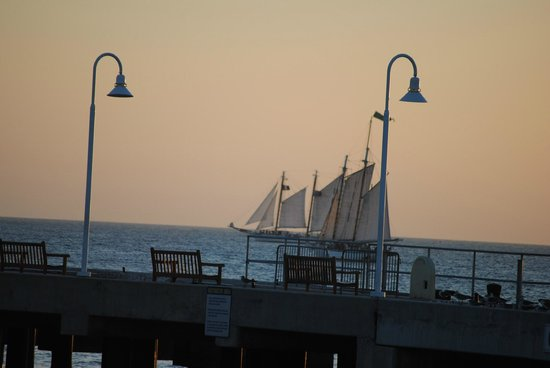 Sailboats by Mallory Square