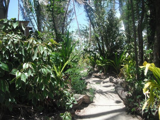 Robinson Crusoe Island Resort:                   Beautifully kept gardens and pathways by hard working staff