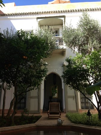 Le Riad Berbere:                   the patio