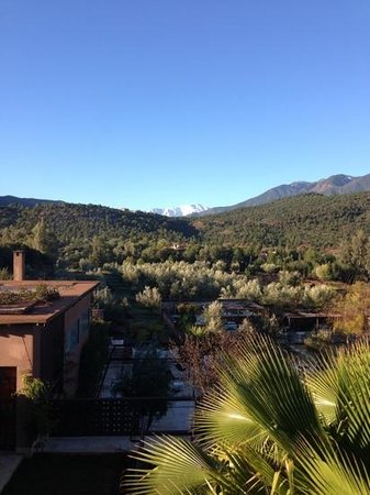 DOMAINE MALIKA Atlas mountains Hotel:                   views from our room
