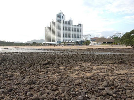 The Westin Playa Bonita Panama:                   shows how far the tide goes out
