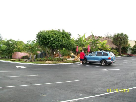 Park View Motel:                   View of the grounds