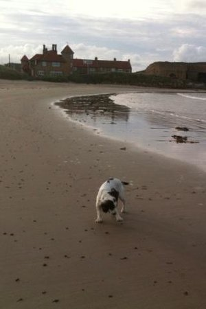 Beadnell, UK:                                                                         Morning