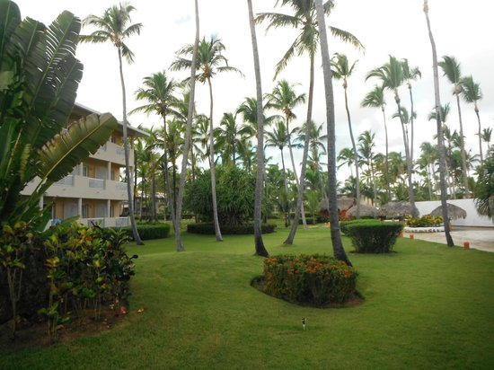 Sirenis Cocotal Beach Resort Casino & Spa:                   Gardens