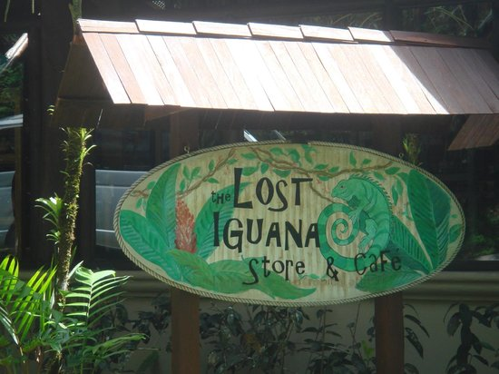 Lost Iguana Resort & Spa:                   Store