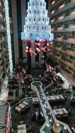 The Royal Garden:                   Hotel Atrium