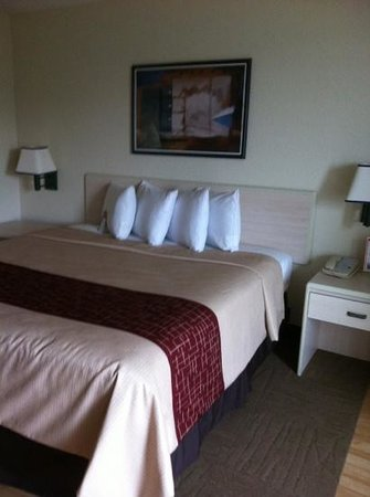 Red Roof Inn - Southpoint:                   clean rooms, fluffy pillows
