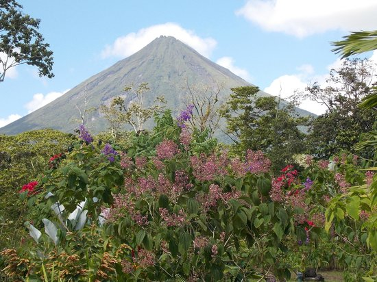 Casa Luna Hotel & Spa:                                                       Arenal from the hotel grounds