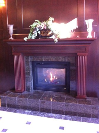 Hampton Inn & Suites Albany - Downtown: The fireplace in the front entrance