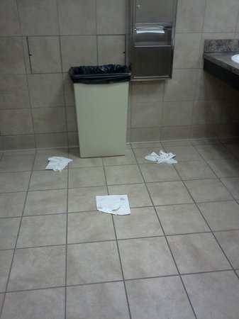 The Cliff House Resort & Spa:                   12 hours later more paper towels on floor, same toilet not flushed either