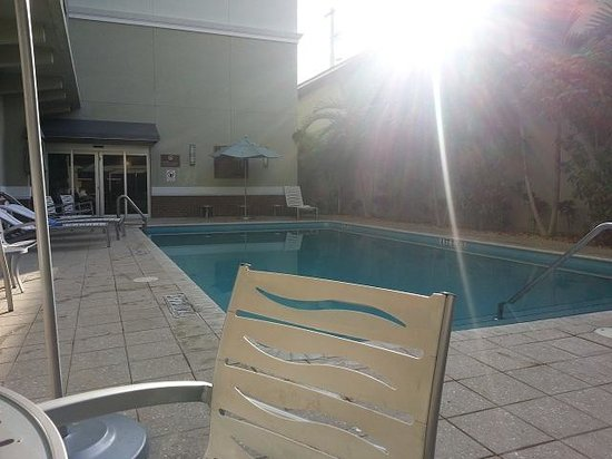 Comfort Suites Miami Airport North:                                                                         Pileta del Hotel