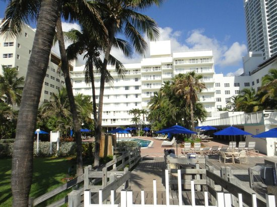 Four Points by Sheraton Miami Beach:                   the hotel looking from the beach