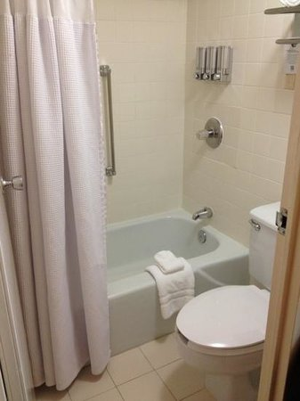 Sonesta Hotel Philadelphia: amazing shower head but small space for toilet