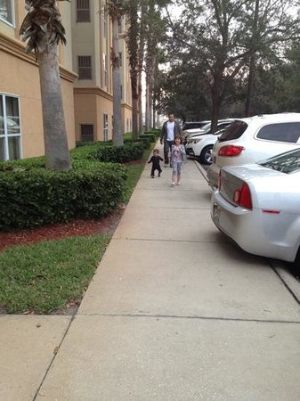 Quality Suites Lake Buena Vista:                   Hotel's parking lot