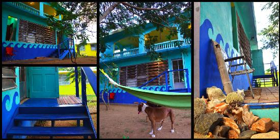 Hammock House Hostel