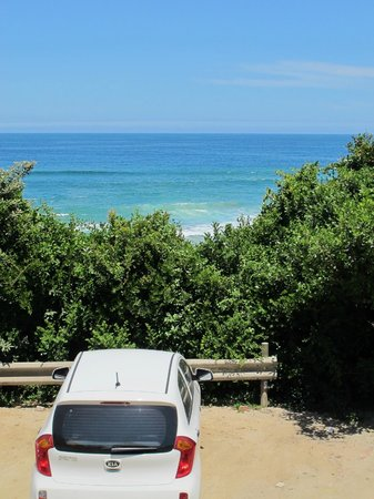 Wilderness Beach house:                   view from Backpackers