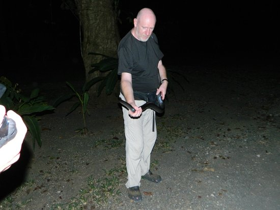 Bosque del Cabo Rainforest Lodge:                   Phillip on the Night Tour with a Mousarani Snake