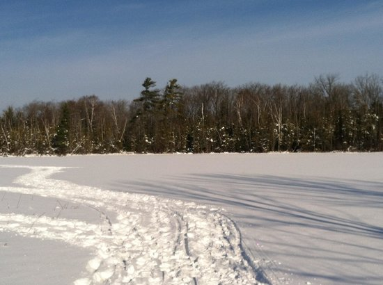 Ellis Lake Resort:                                     Ice fishing and snowshoeing over Ellis Lake