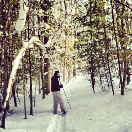 Interlochen, MI:                                     My husband snowshoeing on the trail