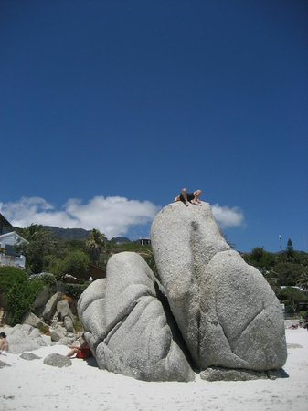 Clifton Beach:                   Napping on Boulder
