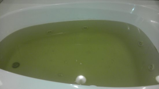 Knights Inn - Ruther Glen:                   green nasty water they expect u to bath in