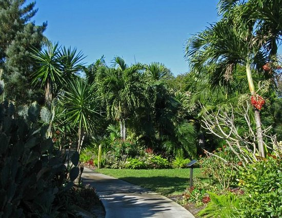 Easy To Access Paths Picture Of Mounts Botanical Garden West Palm Beach Tripadvisor