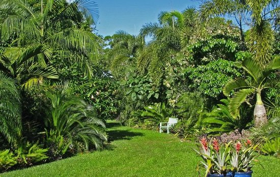 Even The Skeptical Get Involved Picture Of Mounts Botanical Garden West Palm Beach Tripadvisor