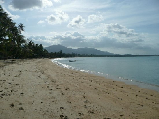 Paradise Beach Resort:                   Maenam Beach Looking West