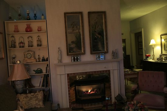 Prescott, Kanada: Cozy up by the fireplace in the guest livingroom..