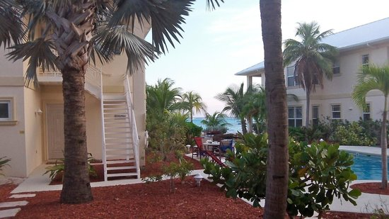 ‪‪The Club at Little Cayman‬: View from patio‬
