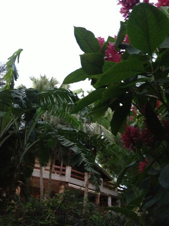 Hotel Capitan Suizo: Beautiful landscaping